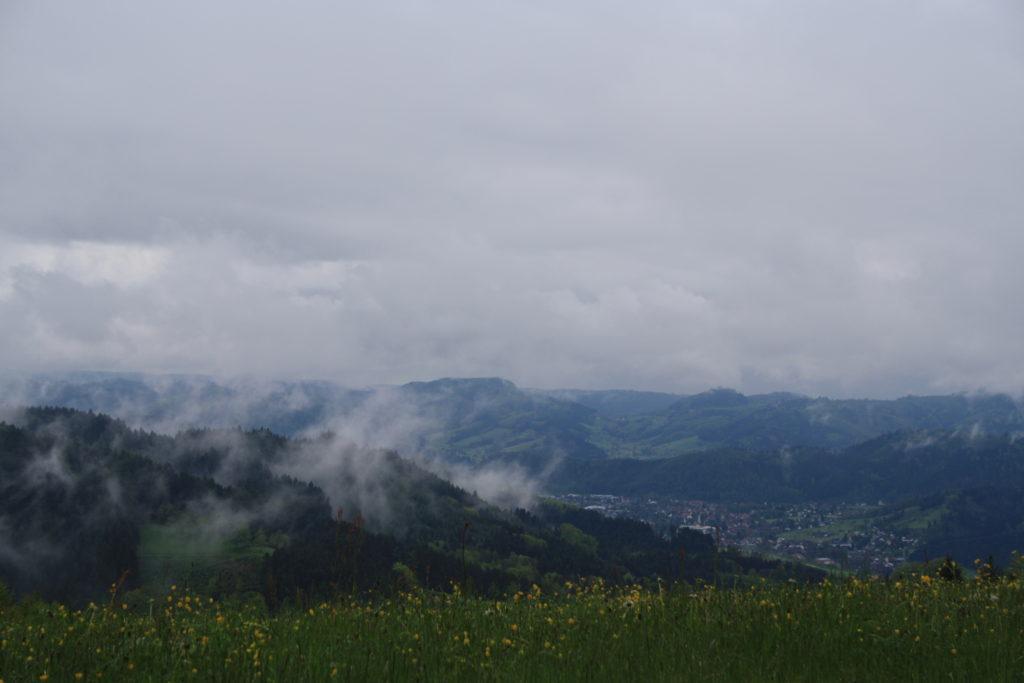 Schwarzwald, Genießerpfad, Wandern, Harmersbacher Vesperweg