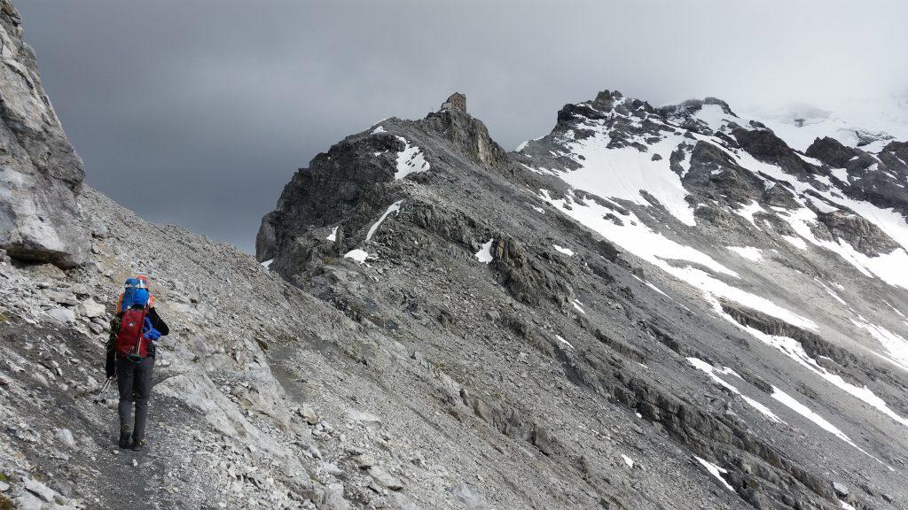 Hochtour, Ortler, Anfänger, Südtirol, Payerhütte, Gipfeltour