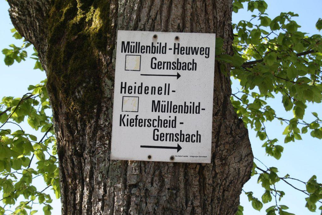 Schwarzwald, Wandern, Wanderung, Murgtal, Murgleiter