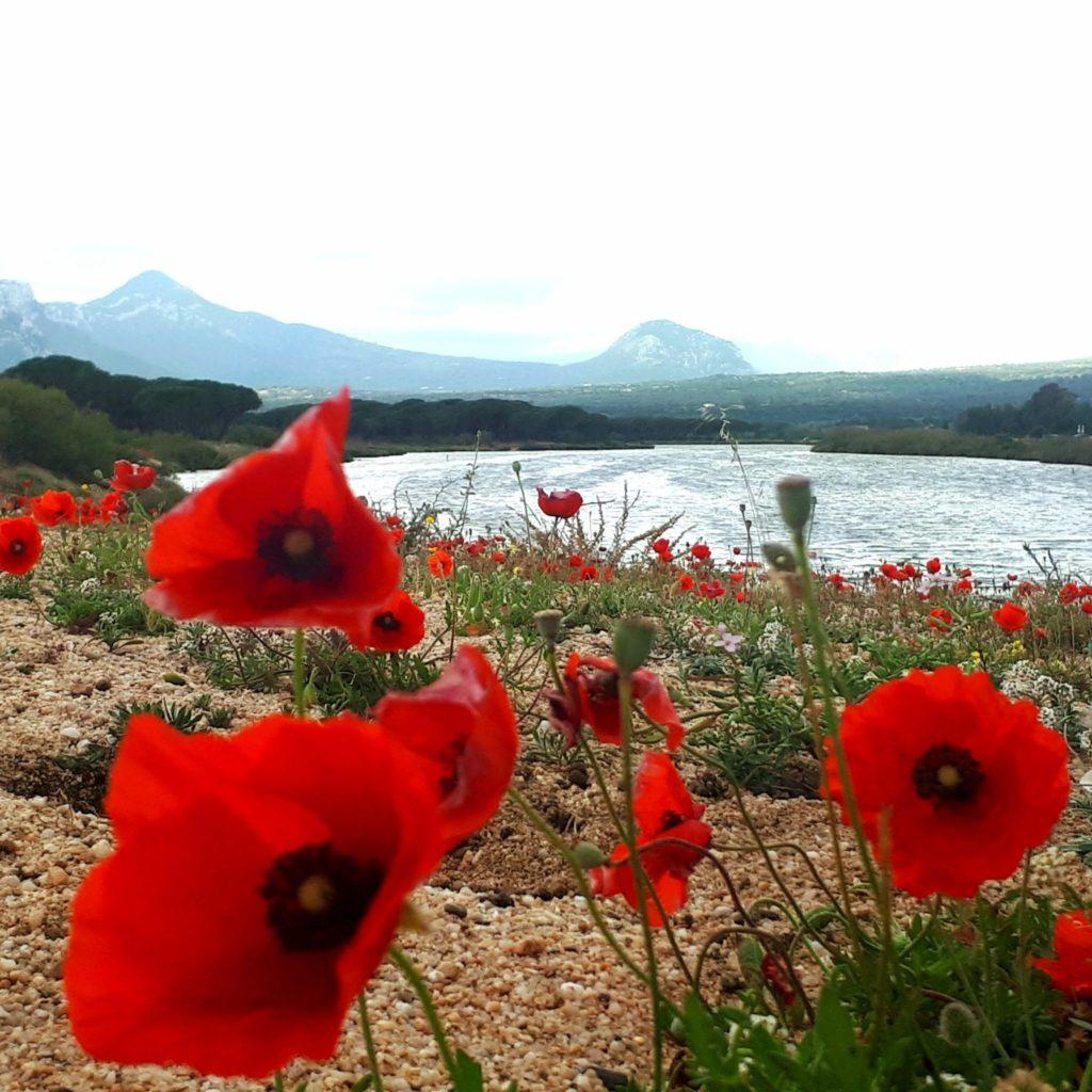 Sardinien, Orosei, Osala, Berge, Wandern
