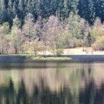Sankenbachsee, Karsee, See, Nordschwarzwald, Schwarzwald, Karsee, Wandern